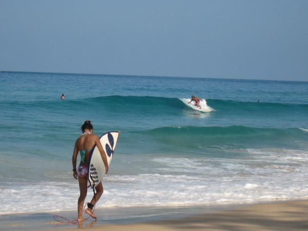 サーフィン&サーフィンスクール情報