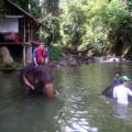 象と水浴び体験&ラフティング