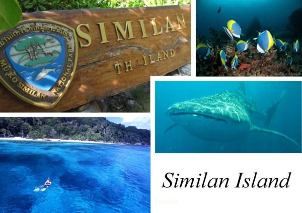 similan-1024x724