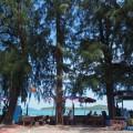 海辺のシーフードレストラン サラローイシーフード(Salaloy Seafood )
