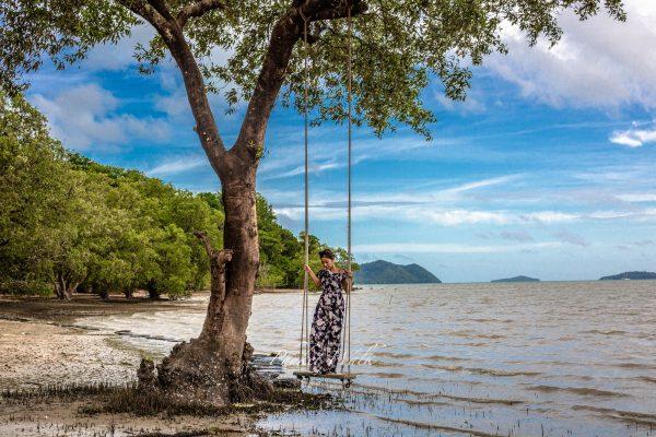 The Mangrove by Blu Monkey