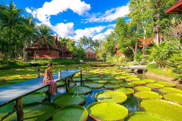 Ma Doo Bua Cafe in Phuket